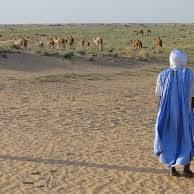 mauritanie2